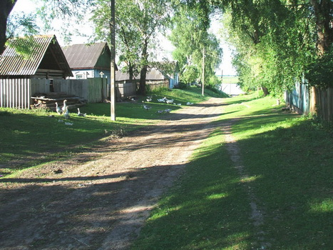 Шалюковка. Июнь 2007