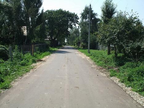 По дороге из Шалюковки в Село. Август 2007