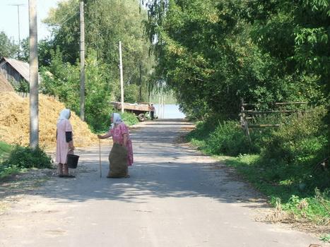 Шалюковка. Август 2007