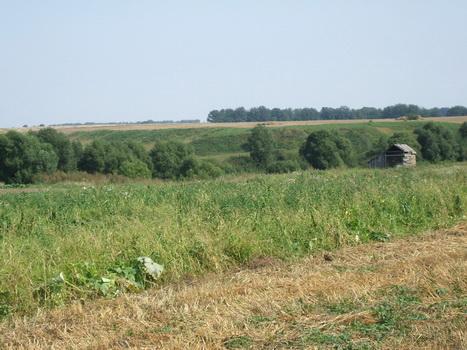 р.Пронька, вид на Жерновки. Август 2007