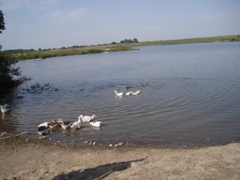 Озеро. Август 2007